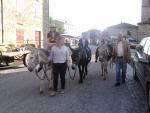 Promenades à dos d'âne